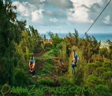 North Shore Zipline Ocean View