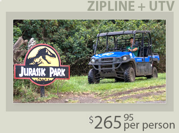 Backyard Zip Line Reviews oahu ziplines | lowest price guaranteed | jurassic zipline | coral