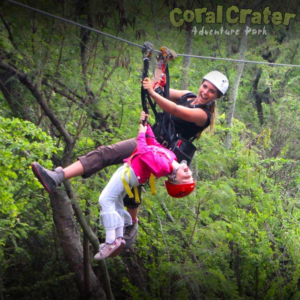 6 oahu ziplines at coral crater adventure park dual ziplines with kids of all ages solutioingenieria Images