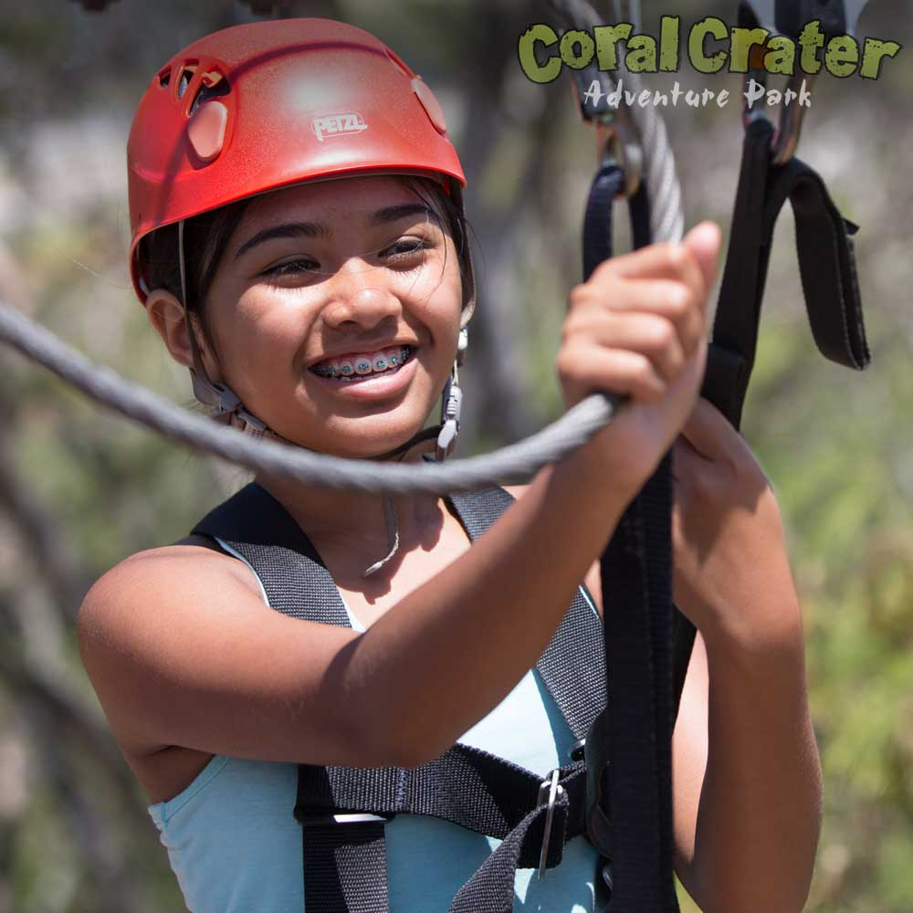 6 oahu ziplines at coral crater adventure park add optional laser guns and shoot at targets solutioingenieria Images