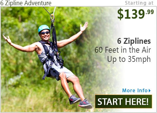 6 Zipline Half Day Adventure
