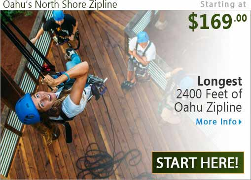 Longest Zipline on Oahu from Climbworks