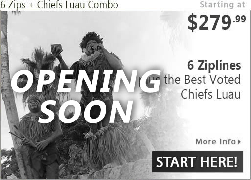 6 Ziplines plus Chief's Luau